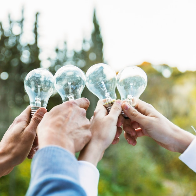 Hands holding bulbs on ecology day Free Photo