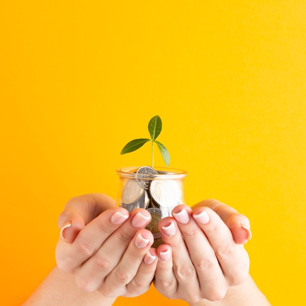 Hands holding jar of coins with plant Free Photo