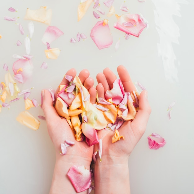Hands holding petals in water Free Photo