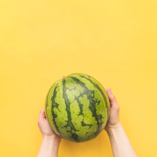 Hands holding whole watermelon Free Photo