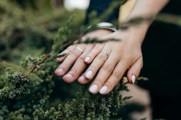 新しい結婚式のカップルの手 Premium写真