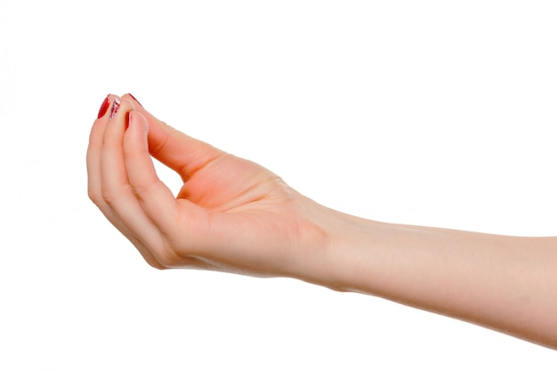 Hands take gesture of open palm for holding on white Premium Photo