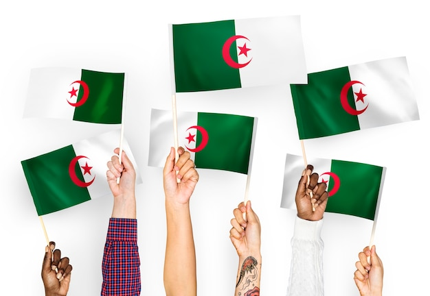 Hands waving flags of algeria Free Photo
