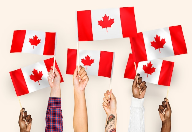 Hands waving flags of canada Free Photo