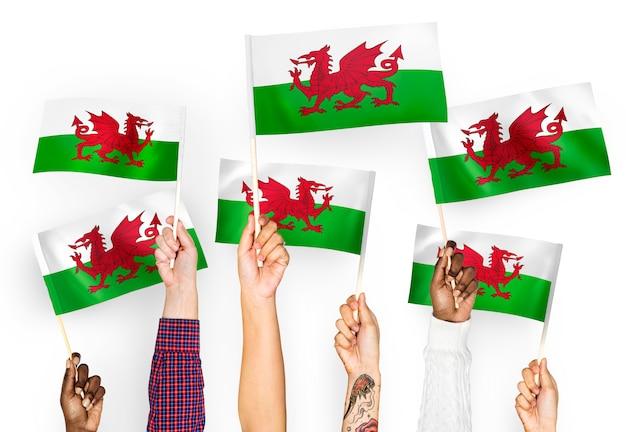 Руки размахивают флагами уэльса Бесплатные Фотографии