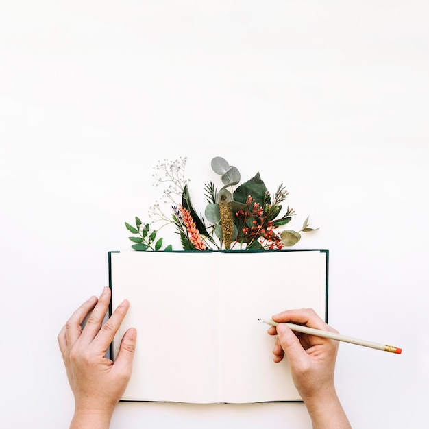 Hands writing in open book and leaves Free Photo