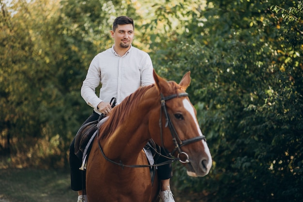 Handsome man riding a horse in forest Free Photo