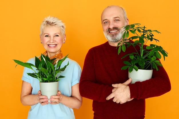 彼の美しい妻と一緒に装飾的な観葉植物を育て、新しい鉢に緑の花を植えるハンサムな年配の男性。美容、自然、植物学、ガーデニング、ケア、鮮度、そして人々のコンセプト 無料写真