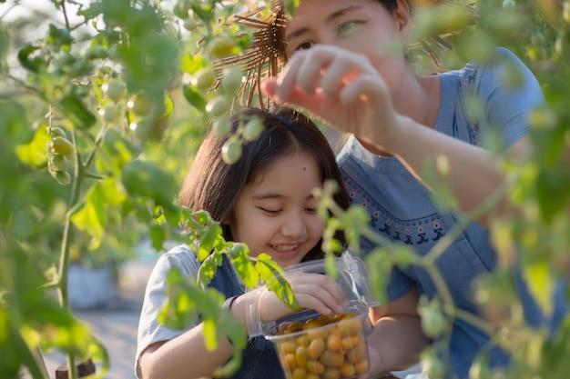 Kết quả hình ảnh cho asian kid harvest