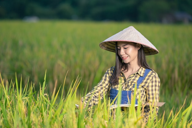Happy asian female write notes in rice fields Free Photo