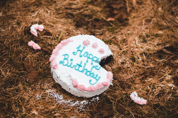 Happy birthday cake on brown dried leaves Free Photo