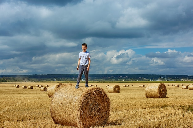 A happy boy is standing on a bale of hay. Premium Photo