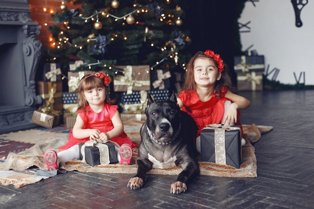 Free Photo Happy Child And Dog With Christmas Gift Child In A Red Dress Baby Having Fun With Dog At Home Xmas Holiday Concept