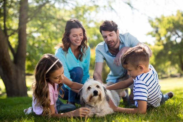 公園で楽しんで幸せな家族 Premium写真