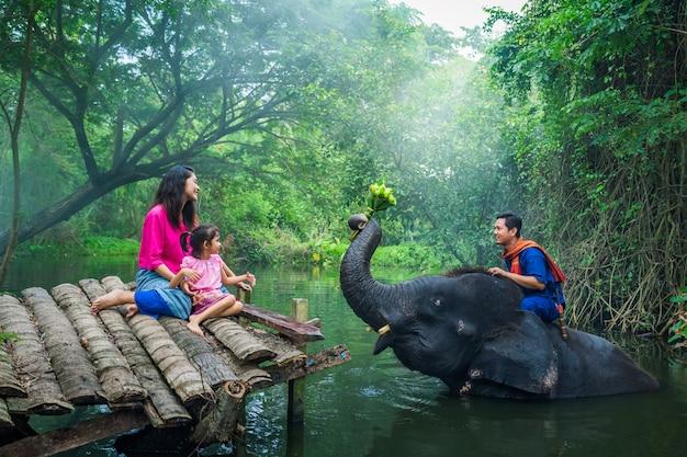 Happy family mahout, thailand Premium Photo