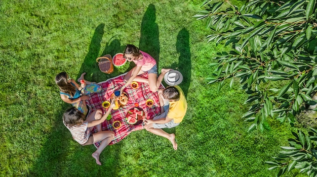 Happy family with children having picnic in park, parents with kids sitting on garden grass and eating healthy meals outdoors, aerial drone view from above, family vacation and weekend concept Premium Photo