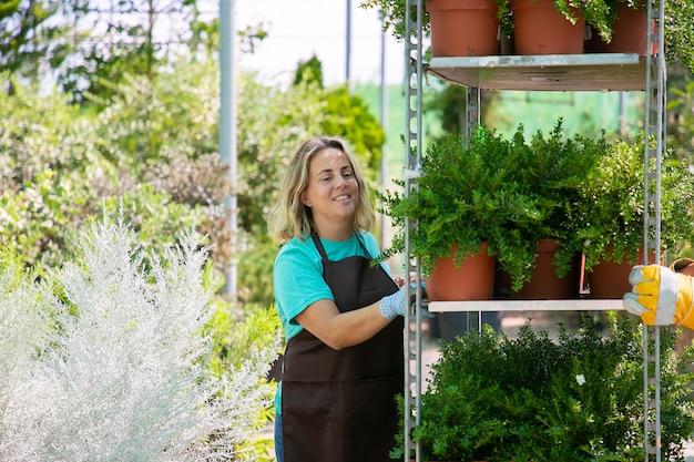 Fiorista femmina felice spostando cremagliera con piante in vaso, tenendo la mensola con piante d'appartamento. colpo medio, spazio della copia. concetto di lavoro di giardinaggio Foto Gratuite