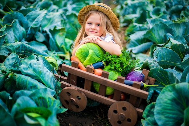 Happy girl in straw hat on cabbage field with basket of vegetables Premium Photo