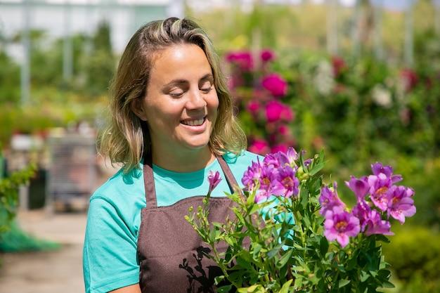 Felice fiorista femminile ispirato in piedi in serra, che tiene pianta in vaso, guardando i fiori viola e sorridente. ritratto professionale, copia dello spazio. lavoro di giardinaggio o concetto di botanica. Foto Gratuite