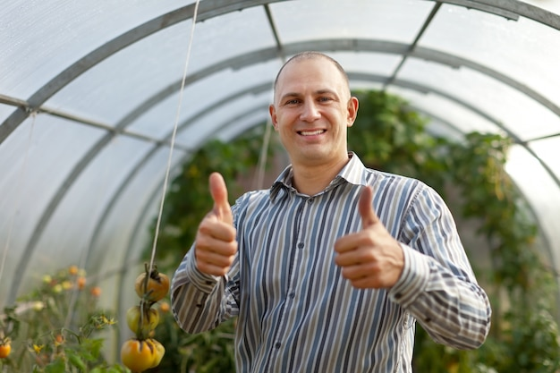 Happy man  in the hothouse Free Photo