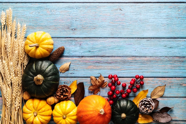 Happy thanksgiving day with pumpkin and nut on blue wooden background Premium Photo