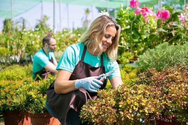 Donna felice che lavora in giardino, coltivazione di piante in vaso, taglio di rami con potatore. concetto di lavoro di giardinaggio Foto Gratuite