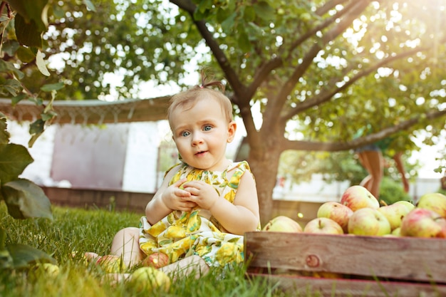 The happy young baby girl during picking apples in a garden outdoors Free Photo