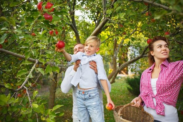 屋外の庭でベリーを摘んでいる間、幸せな若い家族。愛、家族、ライフスタイル、収穫、秋のコンセプト。陽気で健康的で素敵です。 無料写真