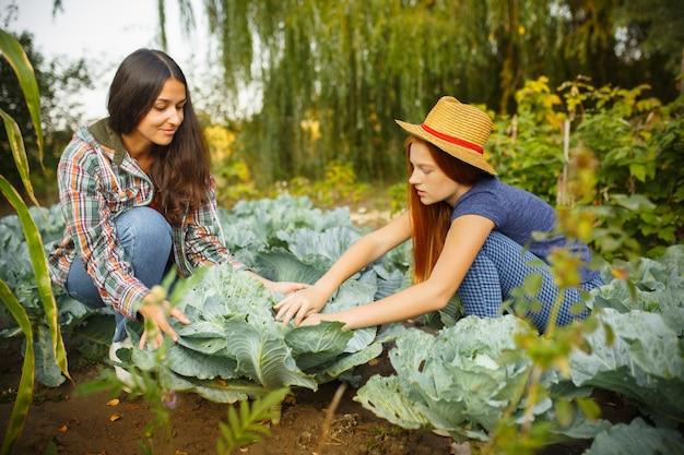 屋外の庭でベリーを摘んでいる間、幸せな若い家族。愛、家族、ライフスタイル、収穫、秋のコンセプト。 無料写真