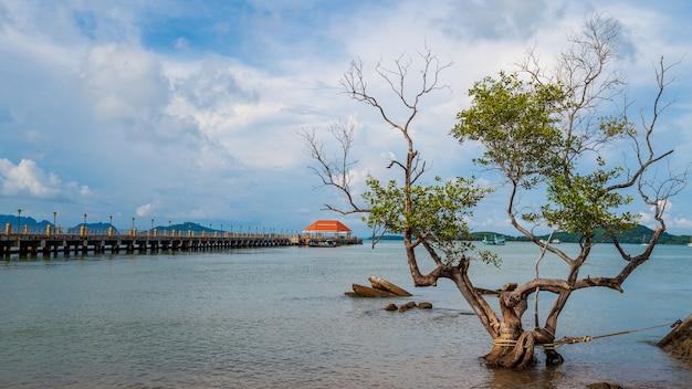 橋とランタ島、クラビ、タイでツリーとランタ島の港 Premium写真