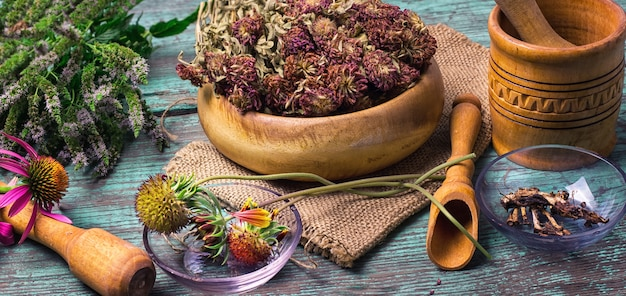 Harvest of medicinal plants Premium Photo