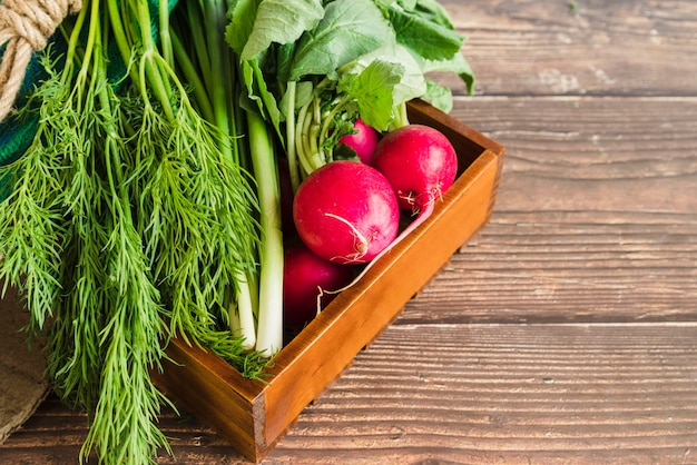 Harvested scallions; dill and red turnip in the wooden tray against wooden backdrop Free Photo
