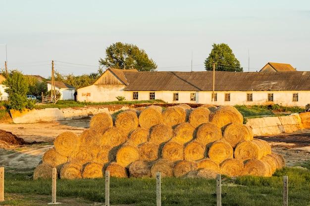 田舎で干し草の俵 無料写真