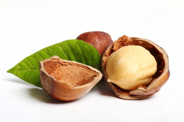 Hazelnuts Free Photo