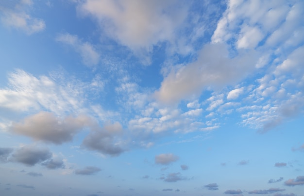 Hd 하늘색 프리미엄 사진