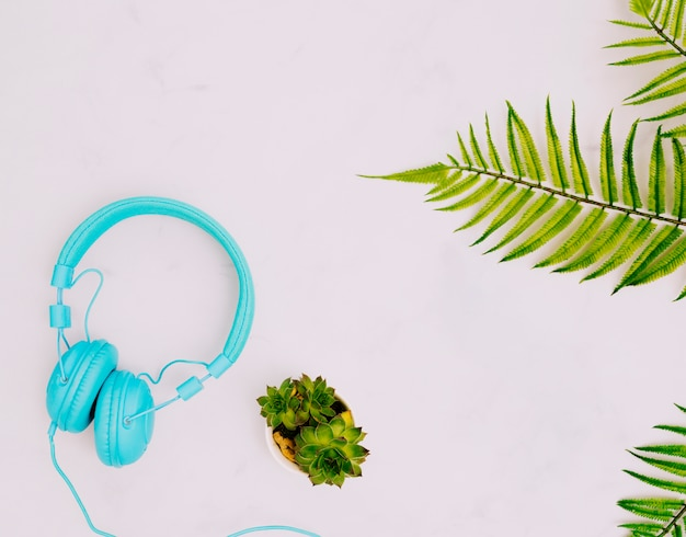 Headphones and plants on light surface Free Photo