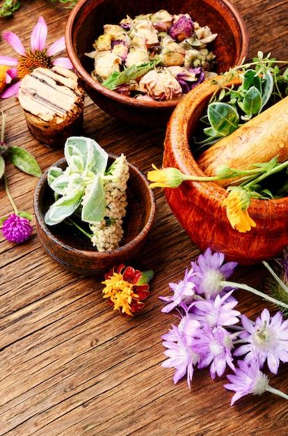 Healing herbs with mortar Premium Photo
