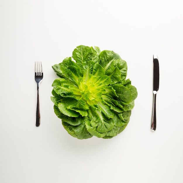 Healthy green lettuce on white background Free Photo