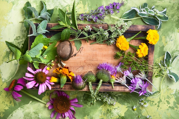 Healthy herbs and flower Premium Photo