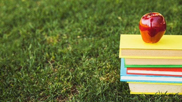Heap of bright books with apple on top on green lawn Free Photo