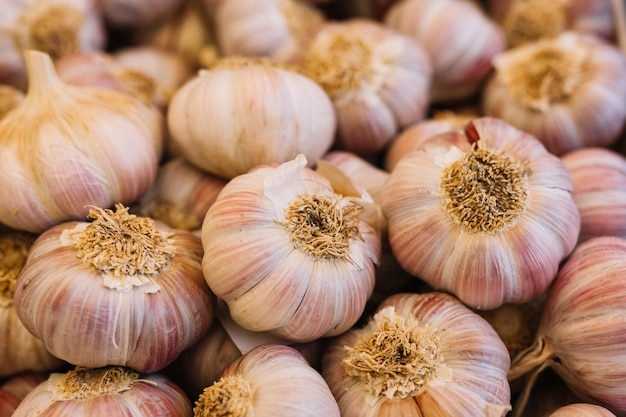 Heap of garlic bulbs Free Photo