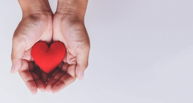Heart on hand for philanthropy Premium Photo