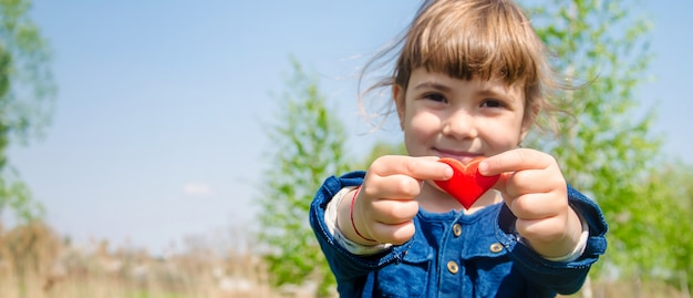The heart is in the hands of the child. selective focus. Premium Photo
