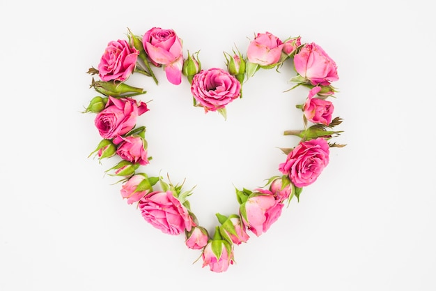 Heart made with pink roses on white background Free Photo