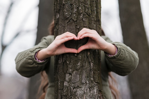 Heart shape made from hands on a tree Free Photo