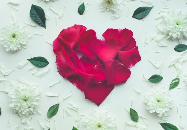 白い背景に花びらの花とバラで作られたハートの形。 Premium写真
