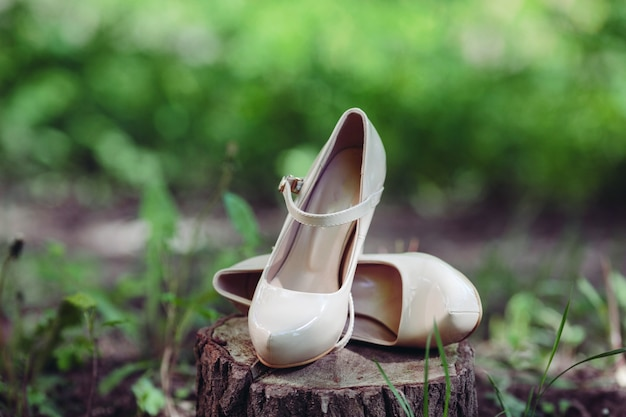 Heeled shoes Free Photo