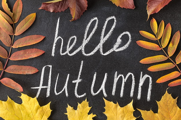 Hello autumn white chalk lettering on blackboard. Premium Photo