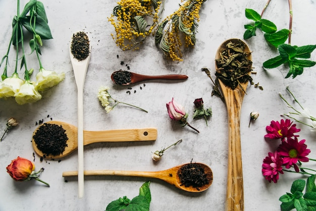 Herb tea for beauty and health Free Photo