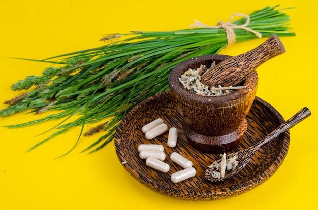 Лечение только травами не дает положительного эффектта прионкологии